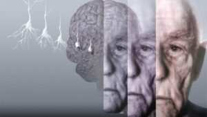Major medical discoveries of recent times